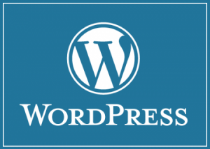 Fare-blog-con-wordpress-300x214